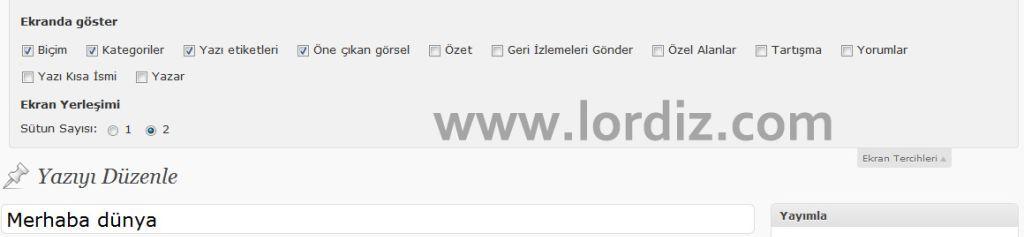 Wordpress Yazı Eklemede Ekran Tercihleri - web-master
