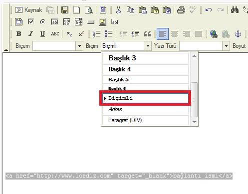 Wordpress Yazılarda Eklentisiz Kod Yazma - web-master
