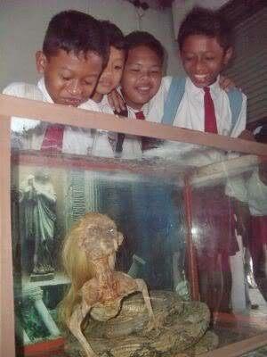 """İnsan Başlı Yılan """"Jenglot"""" Endonezyada Yakalandı (+18)"""