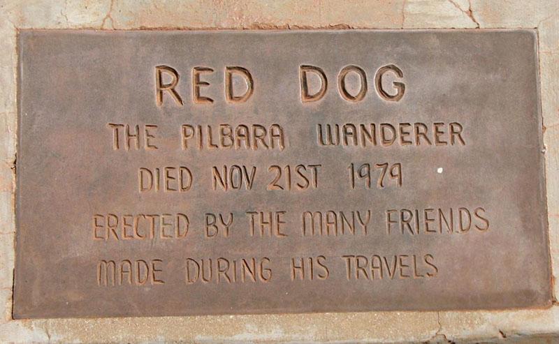 """Bir Köpeğin Gerçek Hikayesi; """"Kırmızı Köpek"""" (Red Dog) - sinema"""