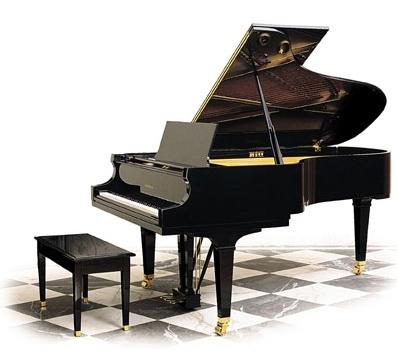 """Kedinin Piyano ile Dansı """"Catcerto"""""""