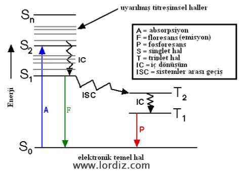 Jablonski Diyagramı (FRET) Nedir?
