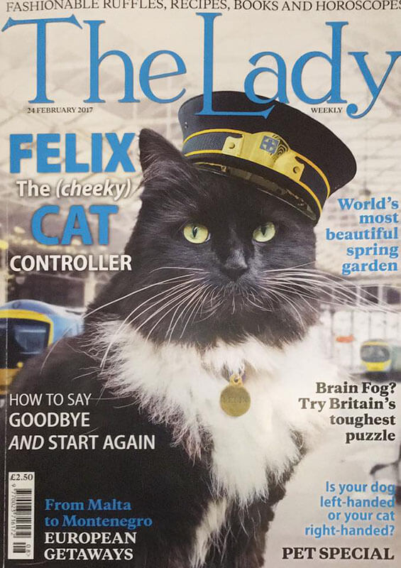 "kedi felix3 zpsmwah6a7f - İstasyon Kedisi (Sorumlusu) ""Felix"""