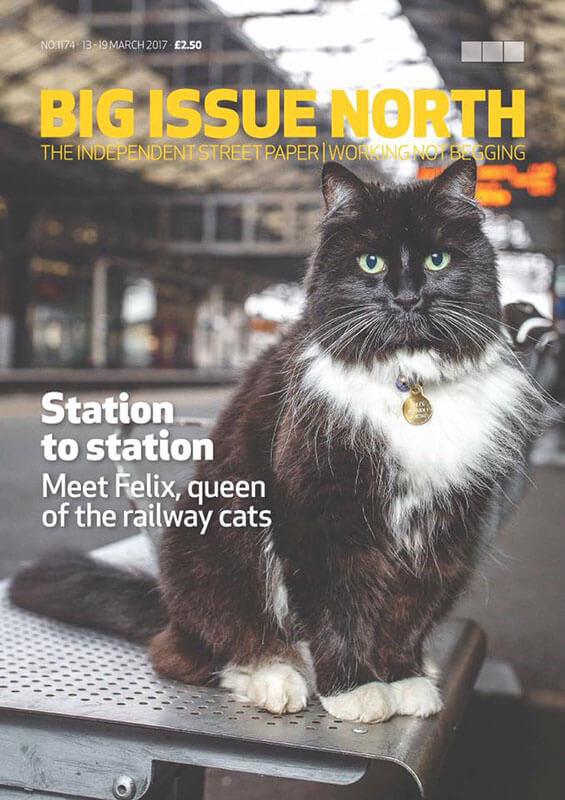 """kedi felix4 zpsukevtvmi - İstasyon Kedisi (Sorumlusu) """"Felix"""""""