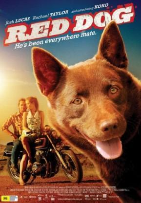 """Bir Köpeğin Gerçek Hikayesi; """"Kırmızı Köpek"""" (Red Dog)"""