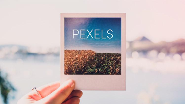 """shutterstock alternatifi pexels - Shutterstock Alternatifi Ücretsiz Stok Görsel Sitesi """"Pexels.com"""""""