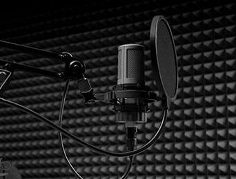 """Merak Edilen Sesler; """"Seslendirme Sanatçıları"""""""