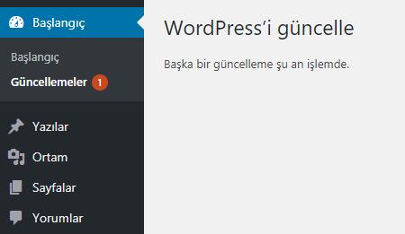 """wordpress guncelleme sorunu - Wordpress """"Başka Bir Güncelleme Şu An İşlemde"""" Sorunu ve Çözümü"""