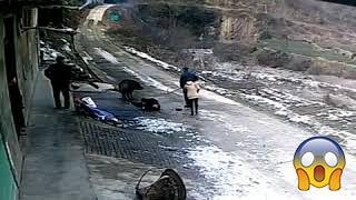 Çin'de Yaşanan Ölümcül Yaban Domuzu Saldırısı